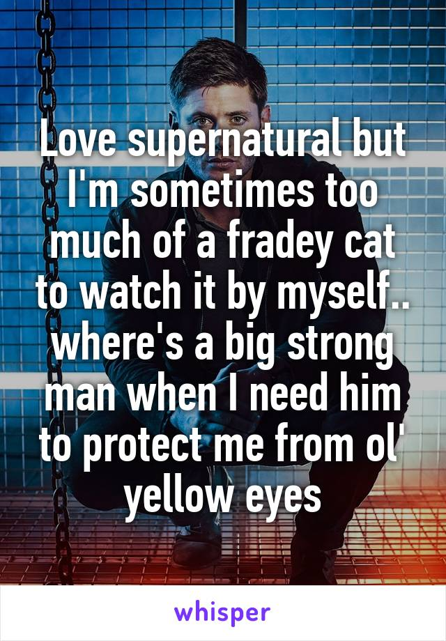 Love supernatural but I'm sometimes too much of a fradey cat to watch it by myself.. where's a big strong man when I need him to protect me from ol' yellow eyes