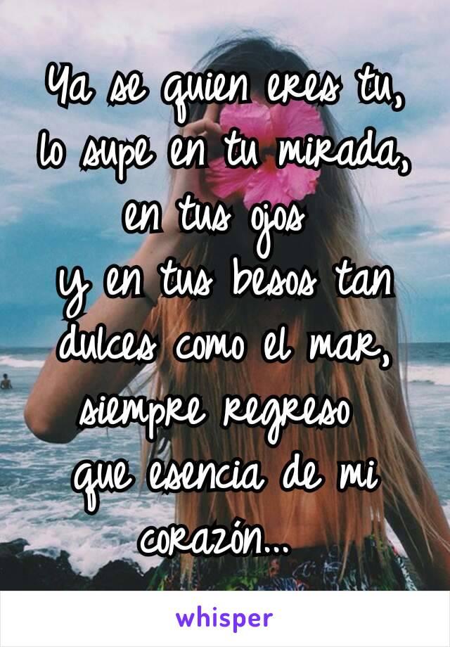 Ya se quien eres tu, lo supe en tu mirada, en tus ojos y en tus besos tan dulces como el mar, siempre regreso que esencia de mi corazón...