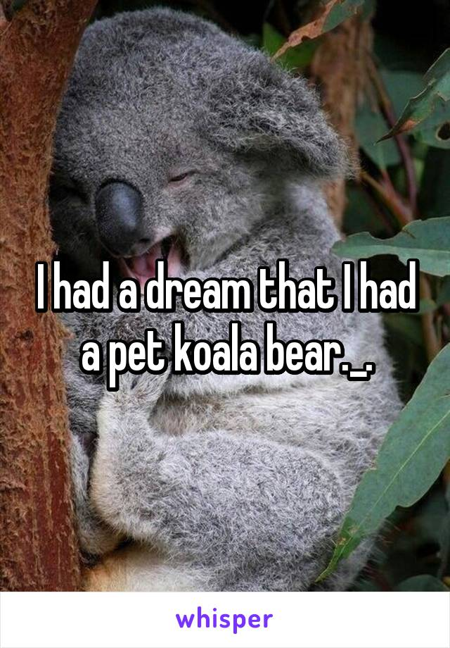 I had a dream that I had a pet koala bear._.