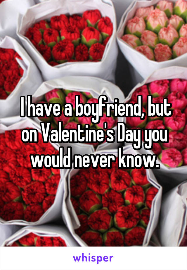 I have a boyfriend, but on Valentine's Day you would never know.