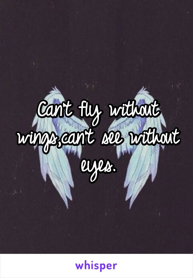 Can't fly without wings,can't see without eyes.