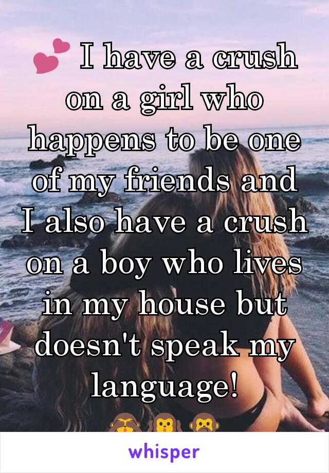 💕 I have a crush on a girl who happens to be one of my friends and I also have a crush on a boy who lives in my house but doesn't speak my language! 🙈🙉🙊