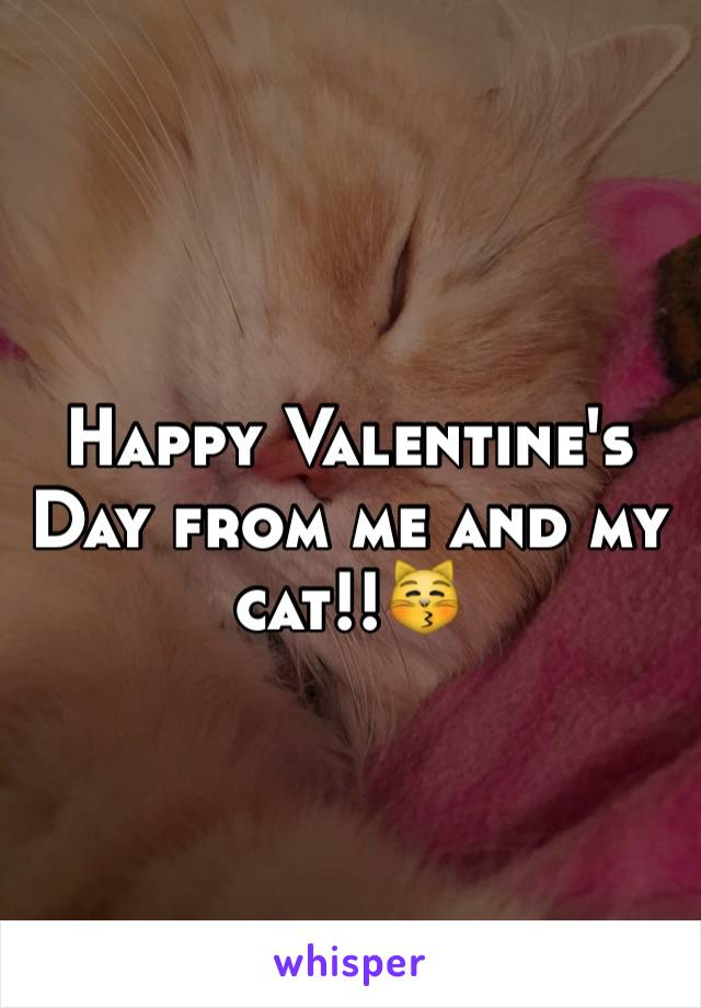 Happy Valentine's Day from me and my cat!!😽