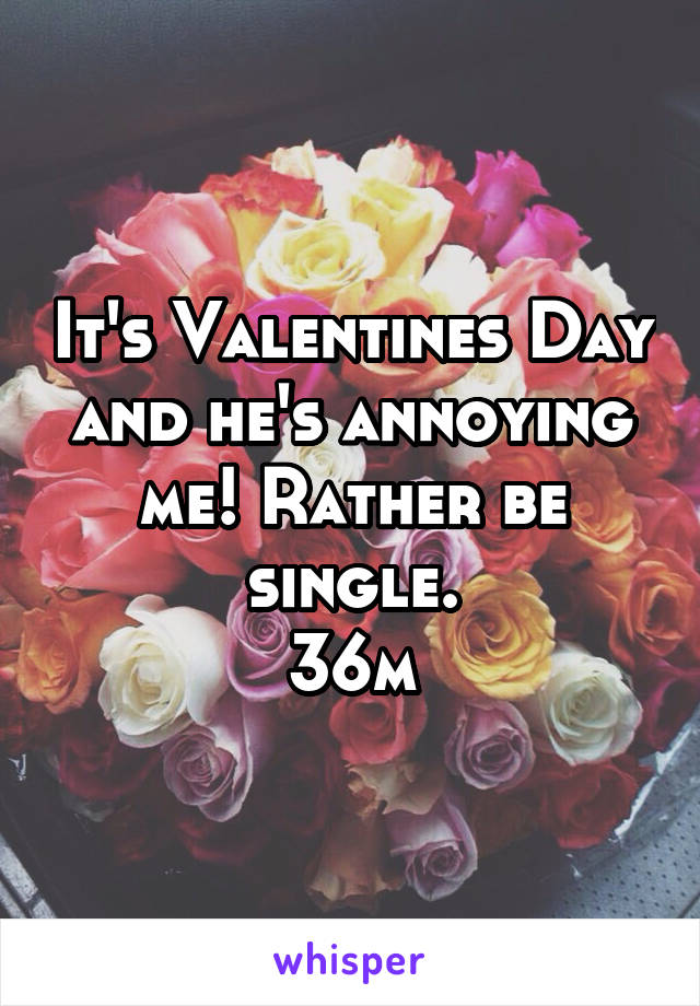 It's Valentines Day and he's annoying me! Rather be single. 36m