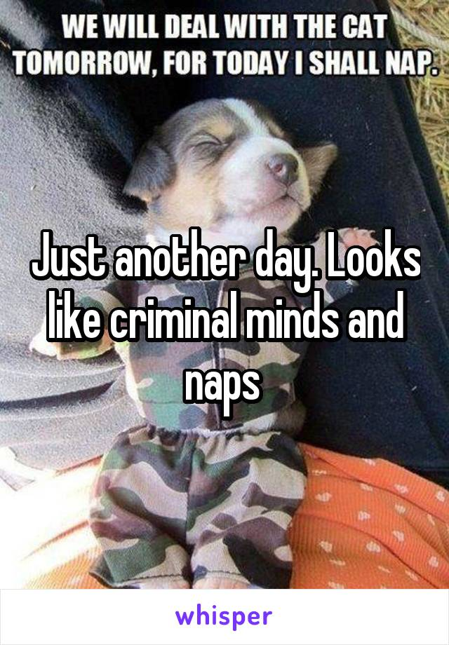Just another day. Looks like criminal minds and naps