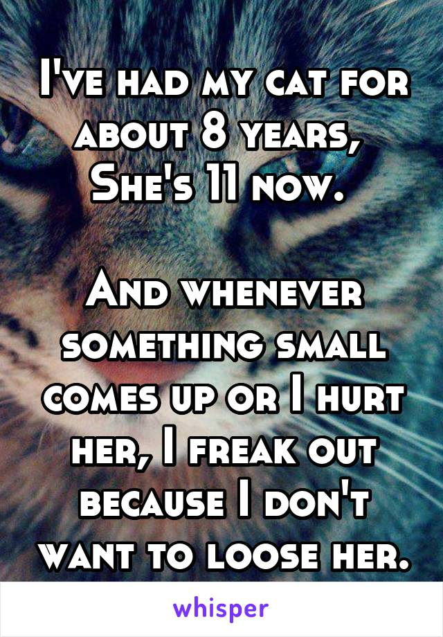 I've had my cat for about 8 years,  She's 11 now.   And whenever something small comes up or I hurt her, I freak out because I don't want to loose her.