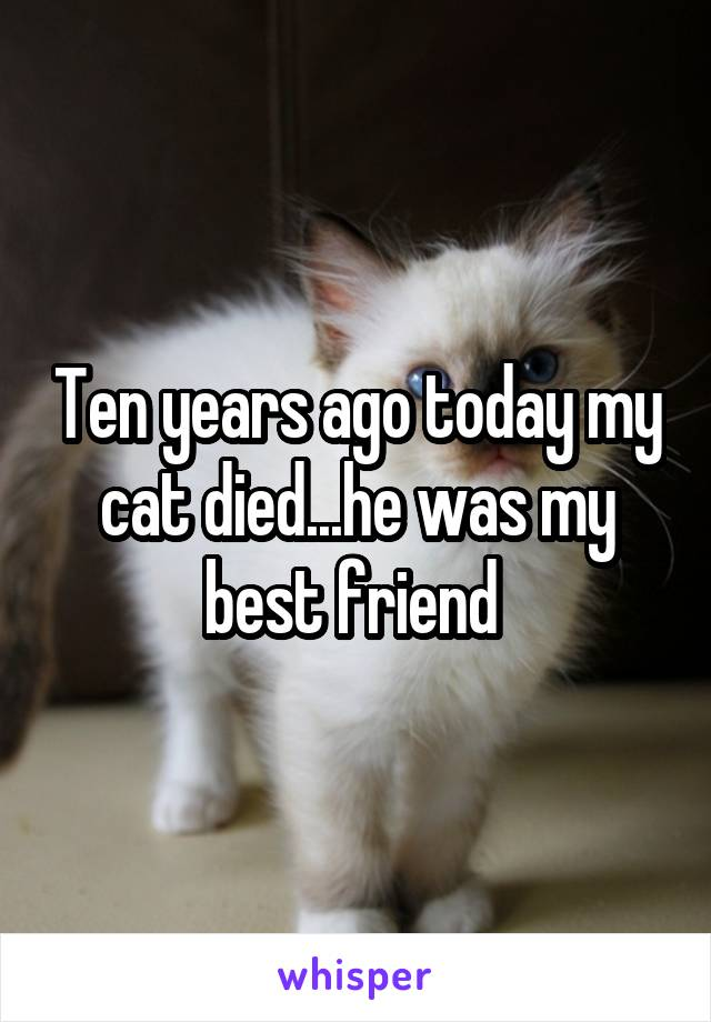 Ten years ago today my cat died...he was my best friend