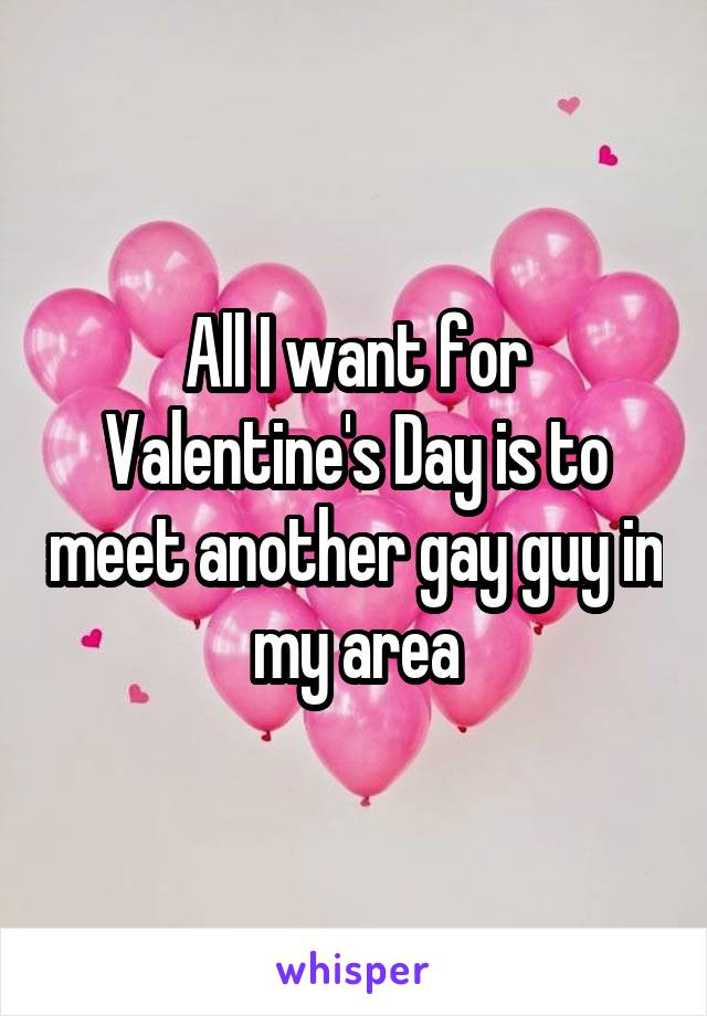 All I want for Valentine's Day is to meet another gay guy in my area