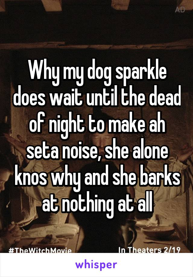 Why my dog sparkle does wait until the dead of night to make ah seta noise, she alone knos why and she barks at nothing at all