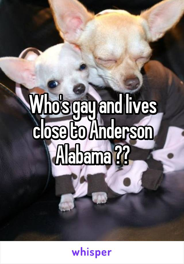 Who's gay and lives close to Anderson Alabama ??