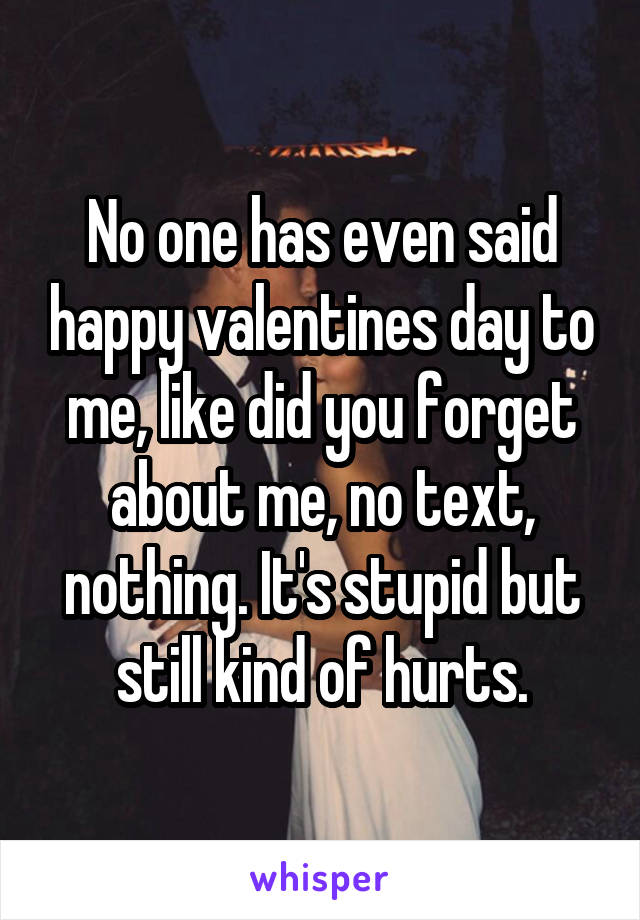 No one has even said happy valentines day to me, like did you forget about me, no text, nothing. It's stupid but still kind of hurts.