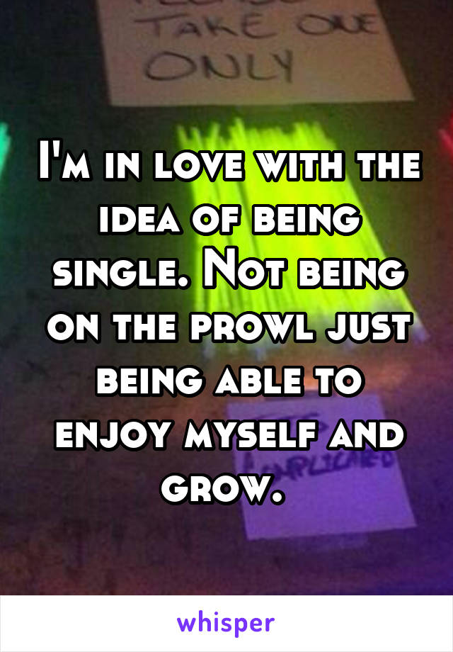 I'm in love with the idea of being single. Not being on the prowl just being able to enjoy myself and grow.