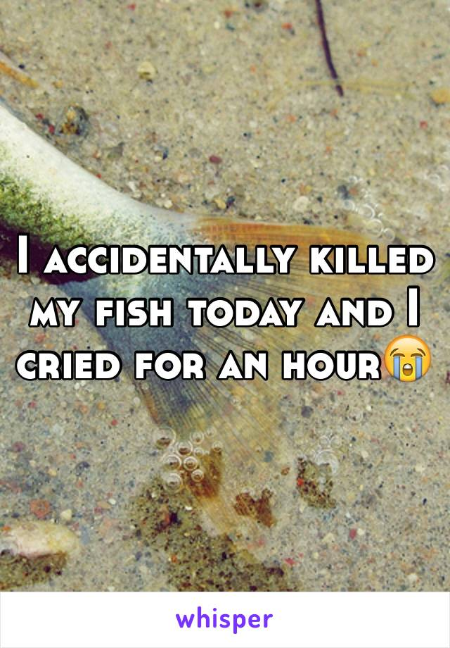 I accidentally killed my fish today and I cried for an hour😭