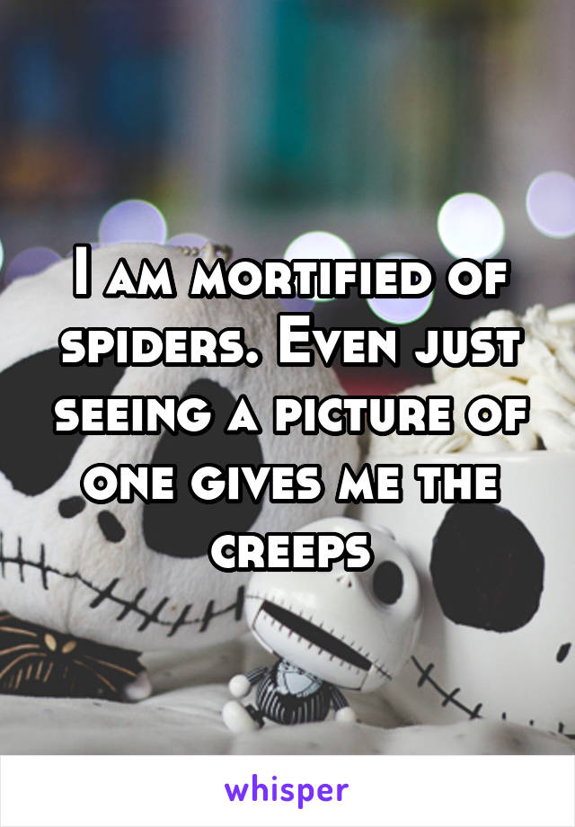 I am mortified of spiders. Even just seeing a picture of one gives me the creeps