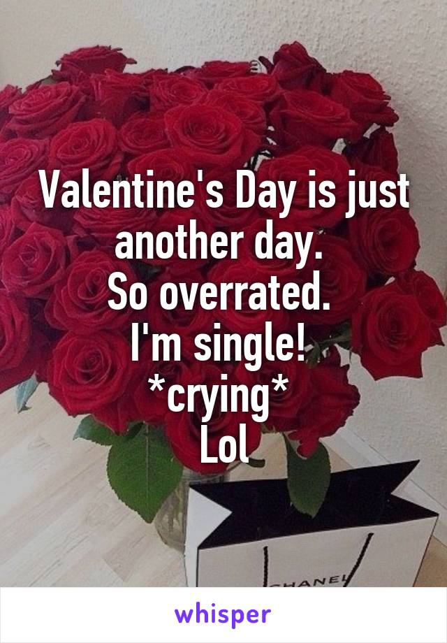Valentine's Day is just another day.  So overrated.  I'm single!  *crying*  Lol