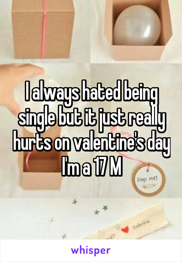 I always hated being single but it just really hurts on valentine's day I'm a 17 M