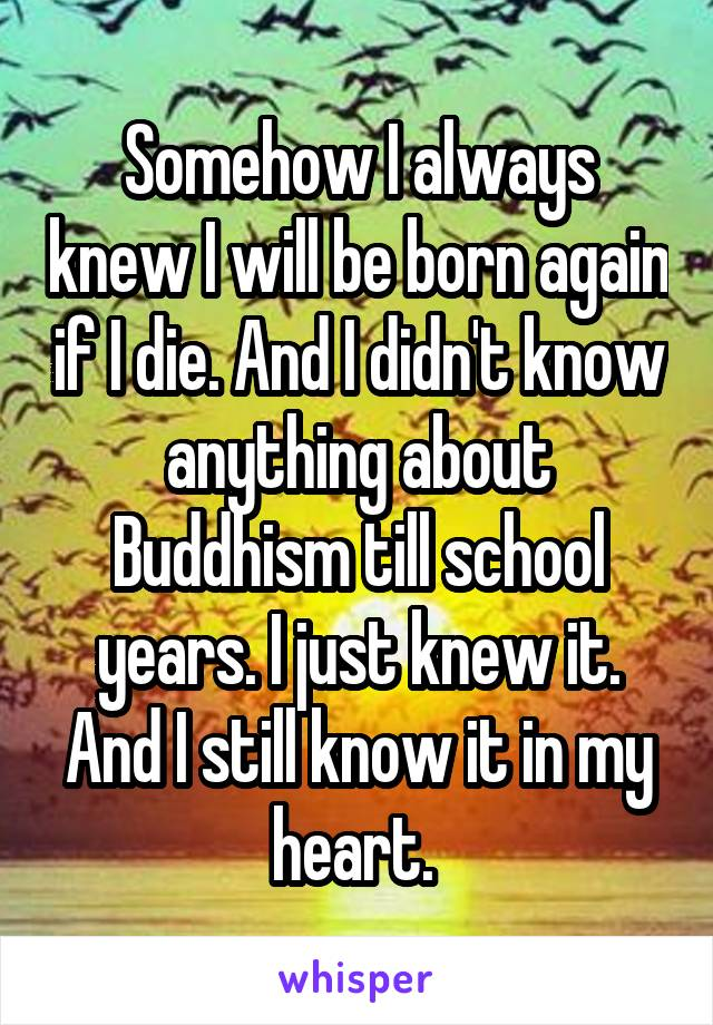 Somehow I always knew I will be born again if I die. And I didn't know anything about Buddhism till school years. I just knew it. And I still know it in my heart.