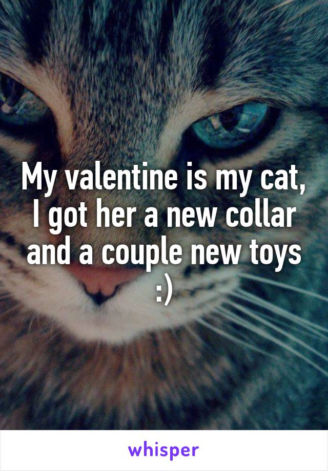 My valentine is my cat, I got her a new collar and a couple new toys :)