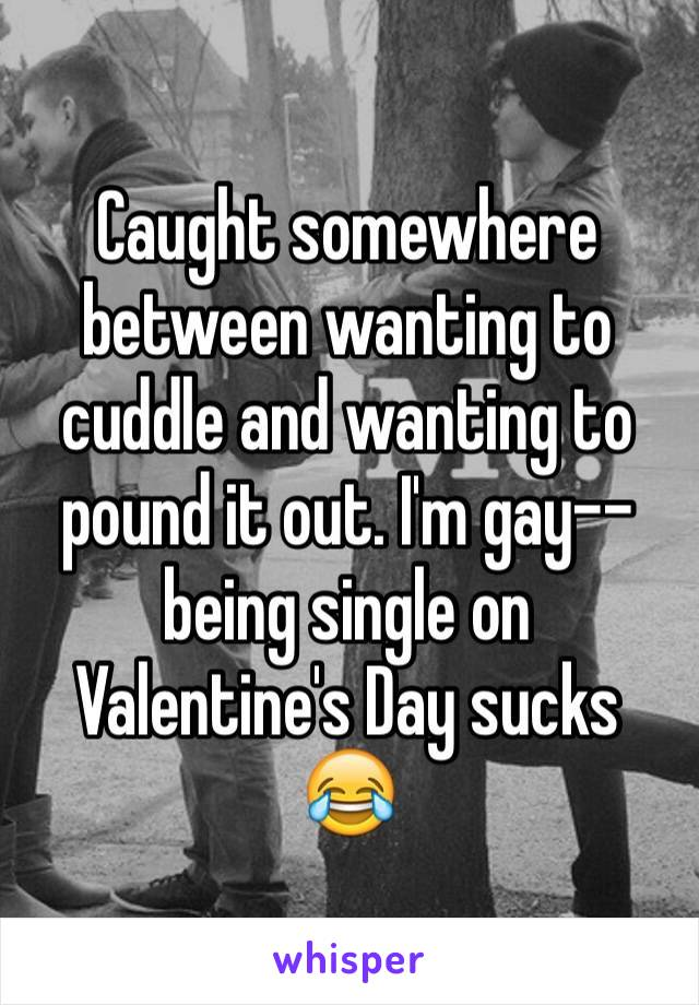 Caught somewhere between wanting to cuddle and wanting to pound it out. I'm gay--being single on Valentine's Day sucks 😂