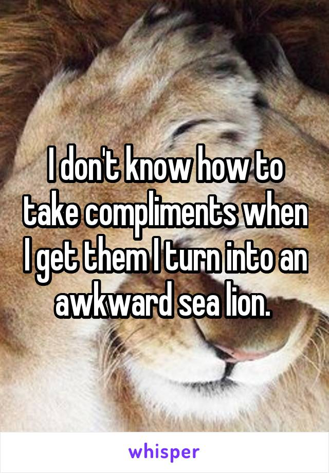 I don't know how to take compliments when I get them I turn into an awkward sea lion.