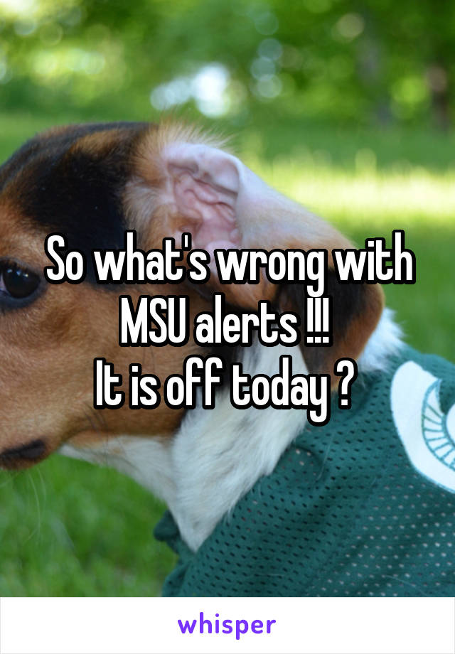 So what's wrong with MSU alerts !!!  It is off today ?