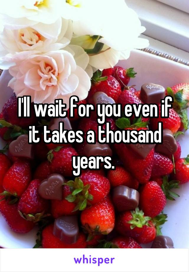 I'll wait for you even if it takes a thousand years.