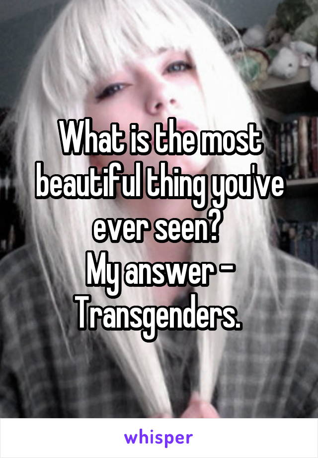 What is the most beautiful thing you've ever seen?  My answer - Transgenders.