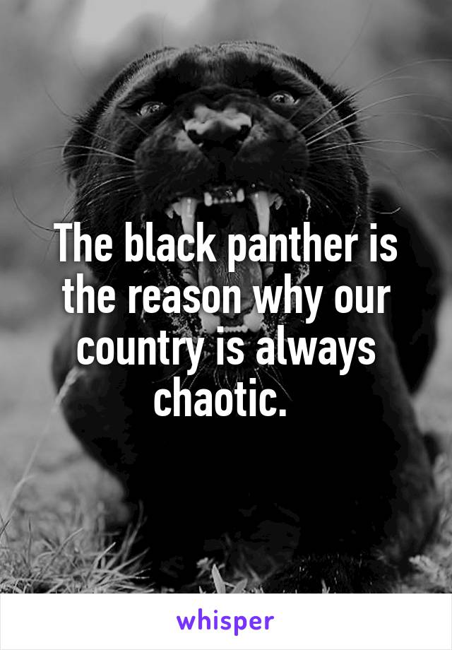 The black panther is the reason why our country is always chaotic.