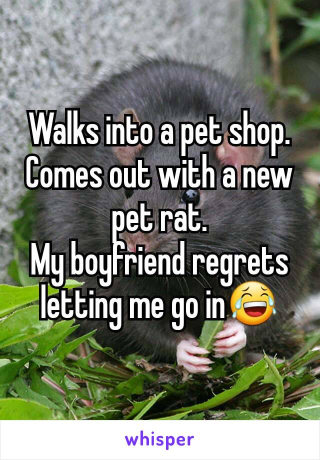 Walks into a pet shop. Comes out with a new pet rat. My boyfriend regrets letting me go in😂