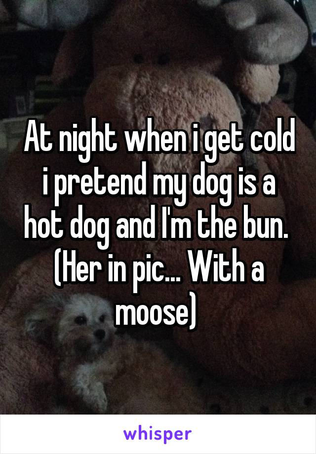 At night when i get cold i pretend my dog is a hot dog and I'm the bun.  (Her in pic... With a moose)