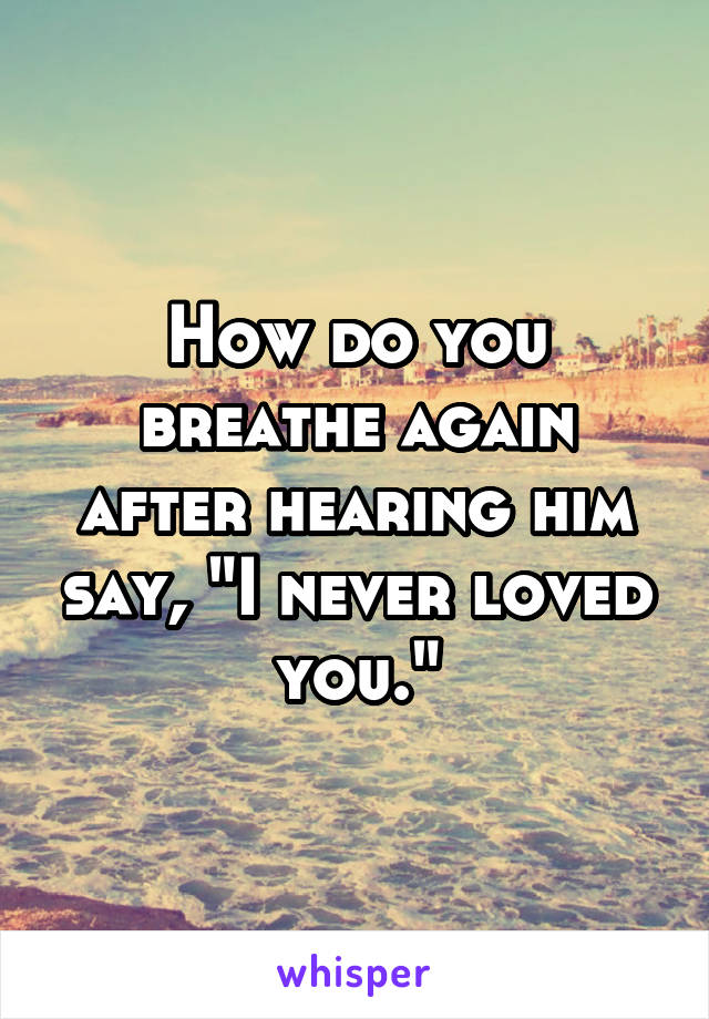 """How do you breathe again after hearing him say, """"I never loved you."""""""