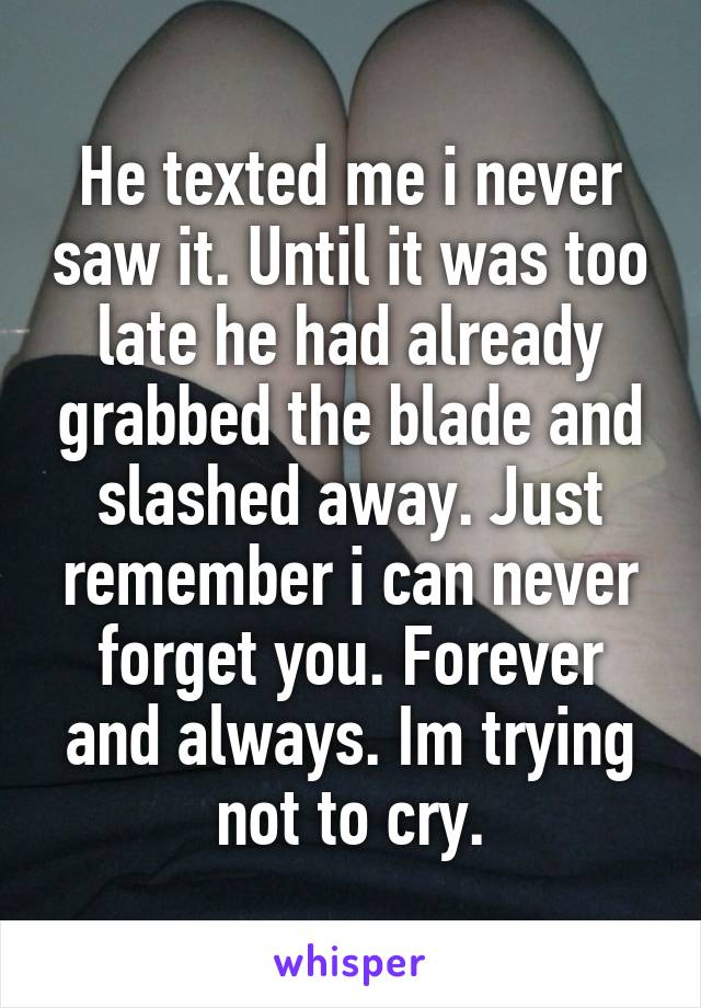 He texted me i never saw it. Until it was too late he had already grabbed the blade and slashed away. Just remember i can never forget you. Forever and always. Im trying not to cry.