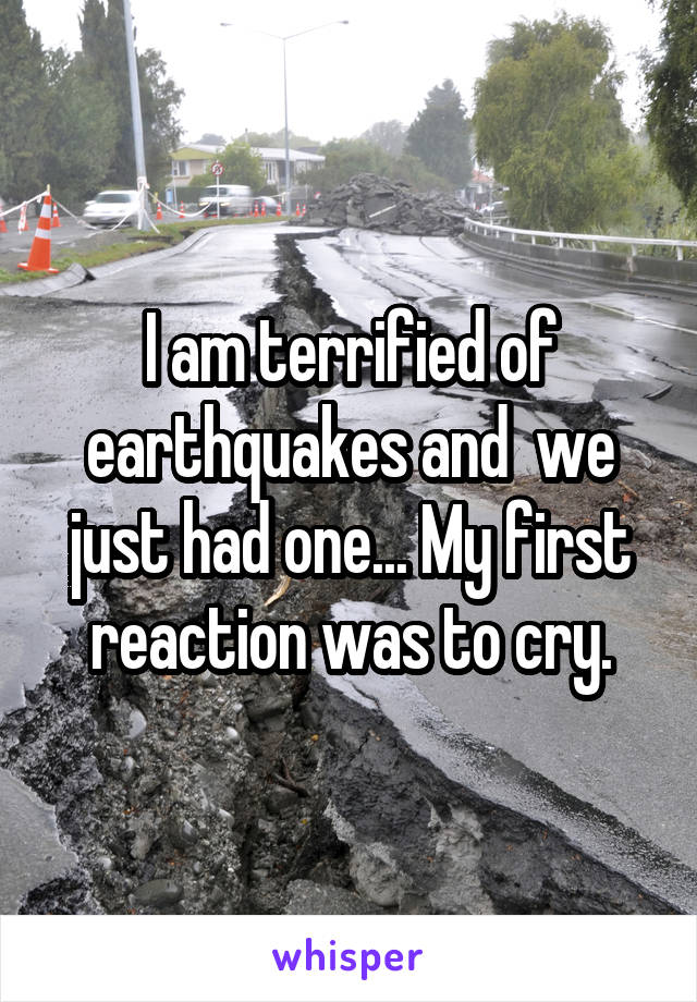 I am terrified of earthquakes and  we just had one... My first reaction was to cry.
