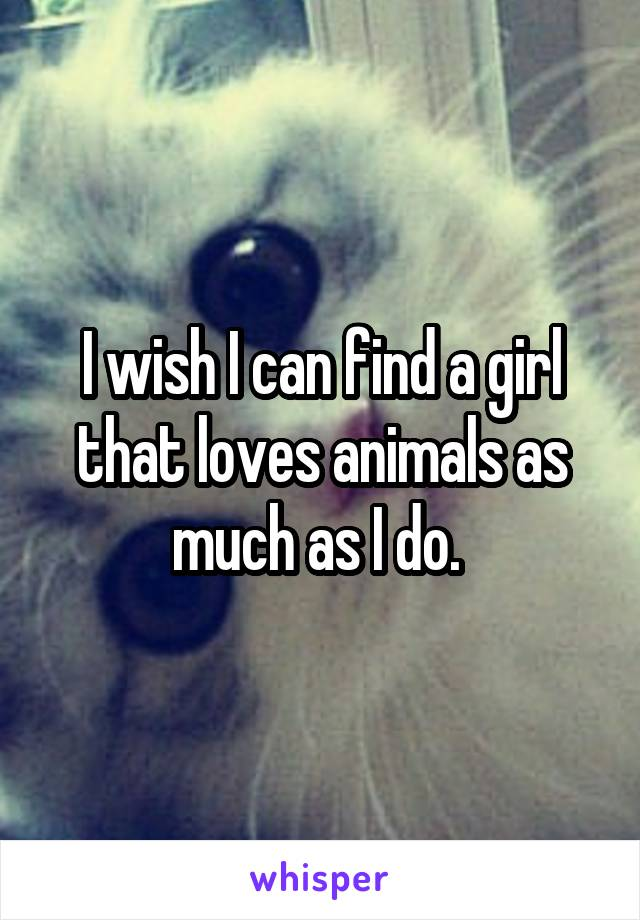 I wish I can find a girl that loves animals as much as I do.