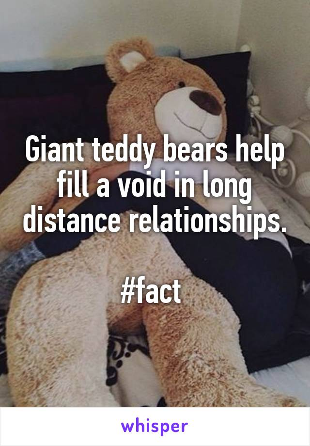 Giant teddy bears help fill a void in long distance relationships.  #fact