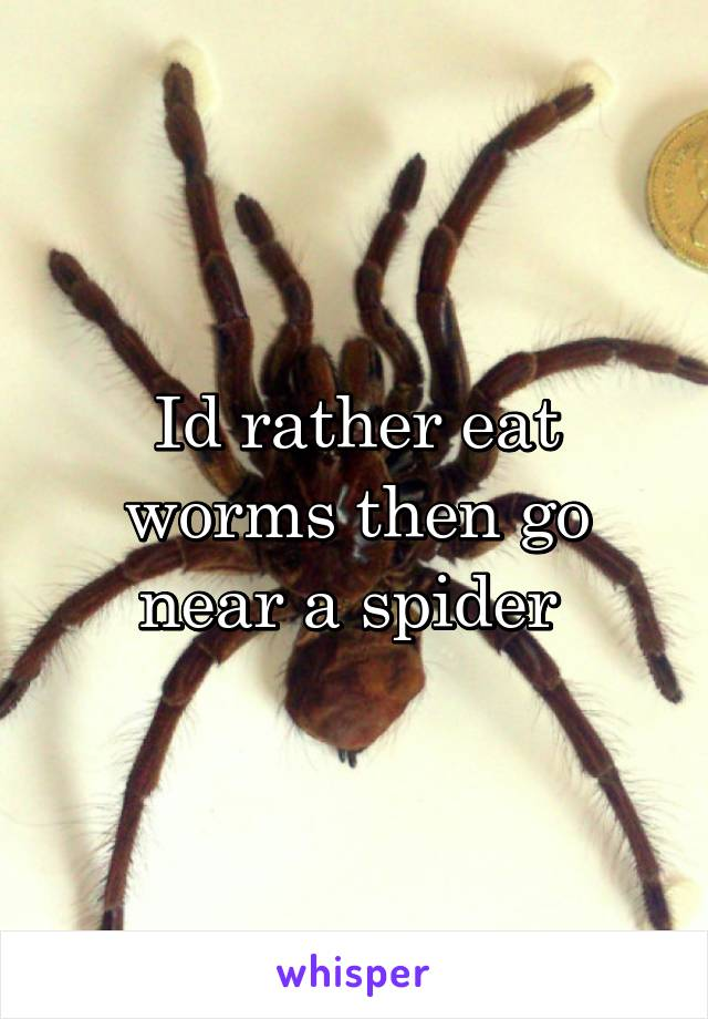 Id rather eat worms then go near a spider