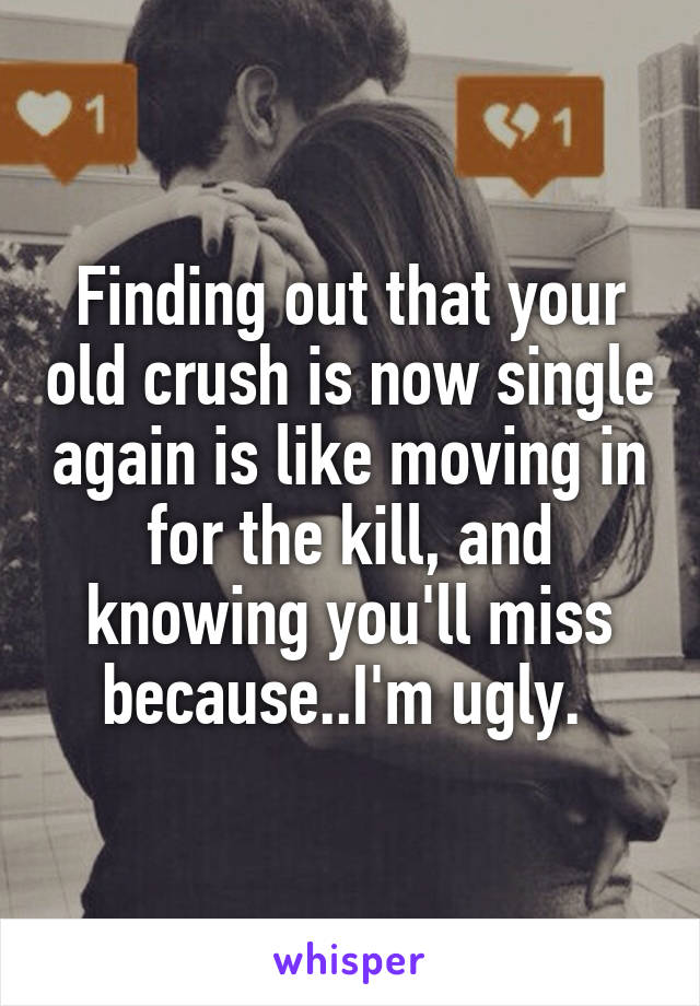 Finding out that your old crush is now single again is like moving in for the kill, and knowing you'll miss because..I'm ugly.