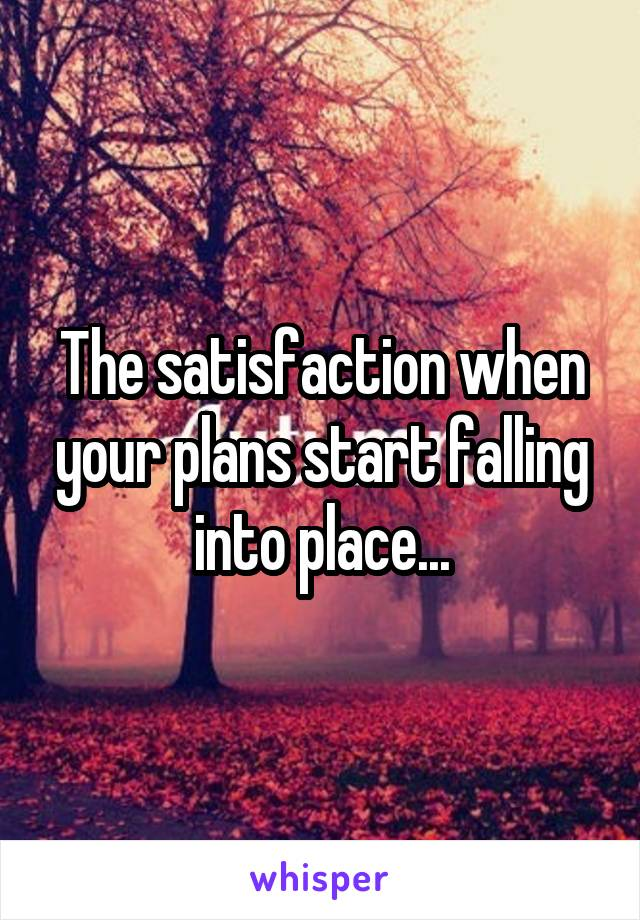 The satisfaction when your plans start falling into place...