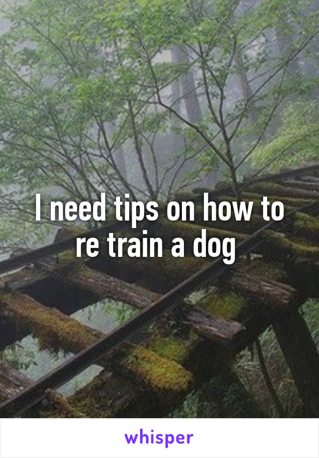 I need tips on how to re train a dog