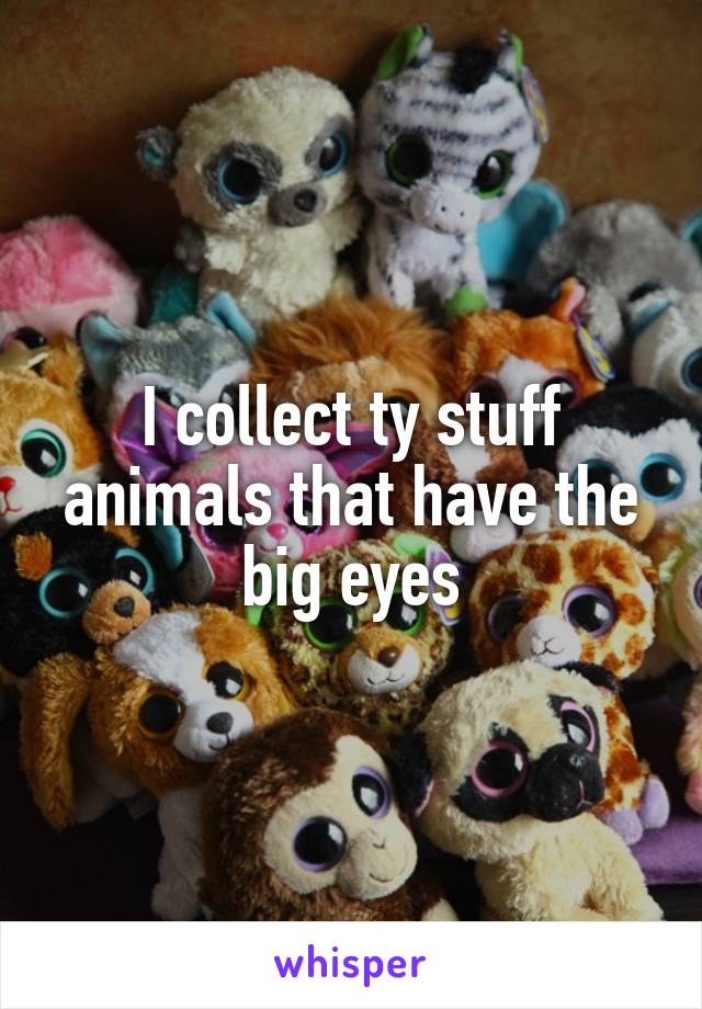 I collect ty stuff animals that have the big eyes