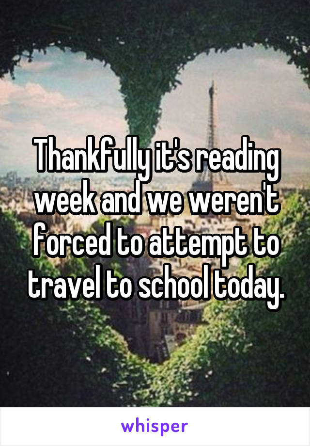 Thankfully it's reading week and we weren't forced to attempt to travel to school today.