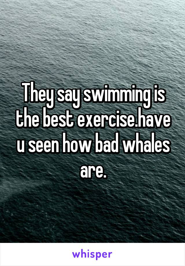 They say swimming is the best exercise.have u seen how bad whales are.