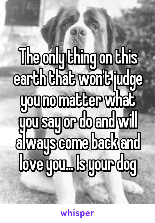 The only thing on this earth that won't judge you no matter what you say or do and will always come back and love you... Is your dog