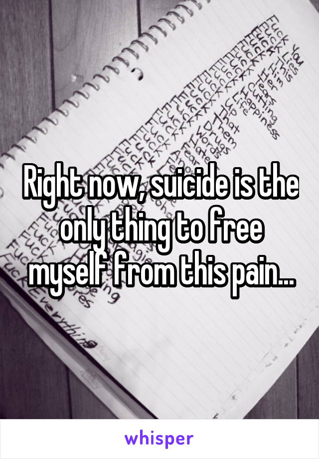Right now, suicide is the only thing to free myself from this pain...