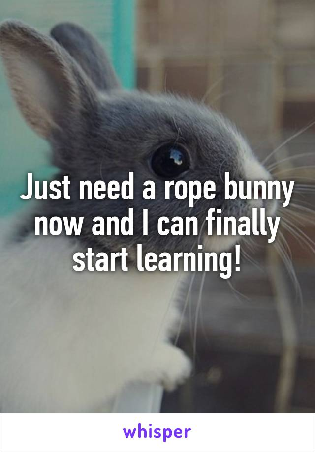 Just need a rope bunny now and I can finally start learning!