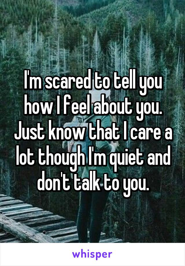 I'm scared to tell you how I feel about you. Just know that I care a lot though I'm quiet and don't talk to you.