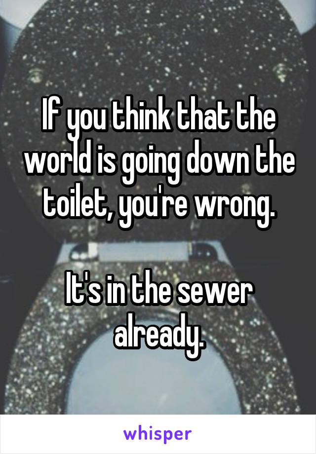 If you think that the world is going down the toilet, you're wrong.  It's in the sewer already.