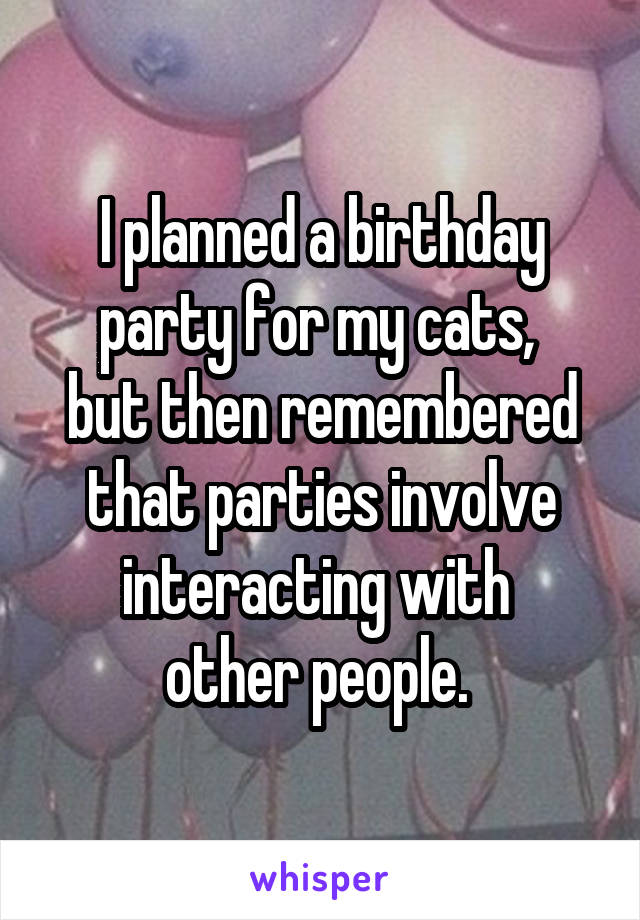 I planned a birthday party for my cats,  but then remembered that parties involve interacting with  other people.