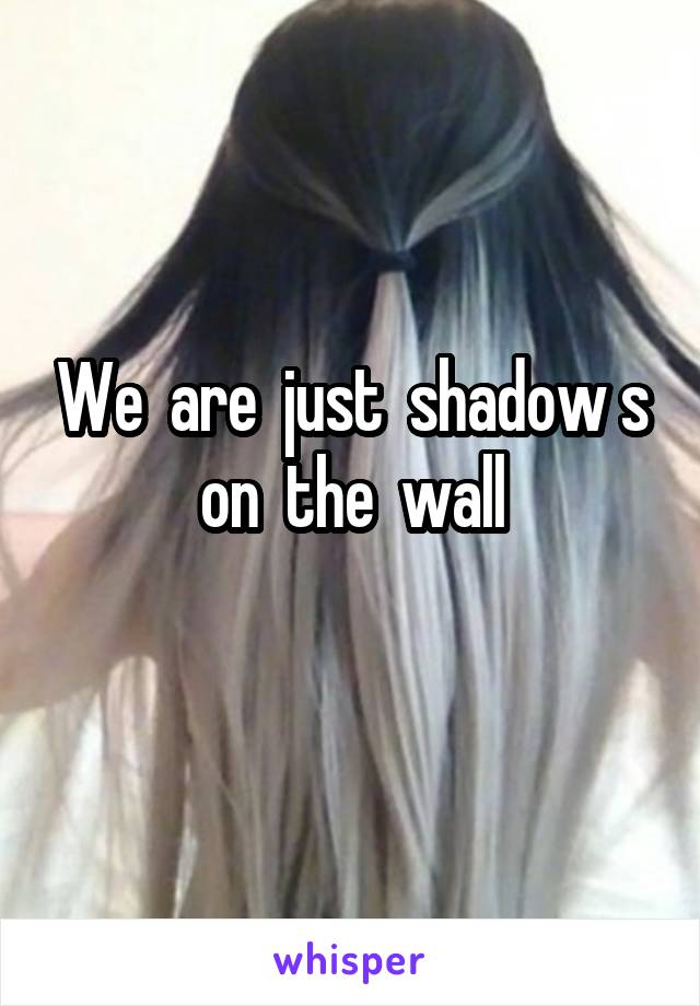We  are  just  shadow s on  the  wall
