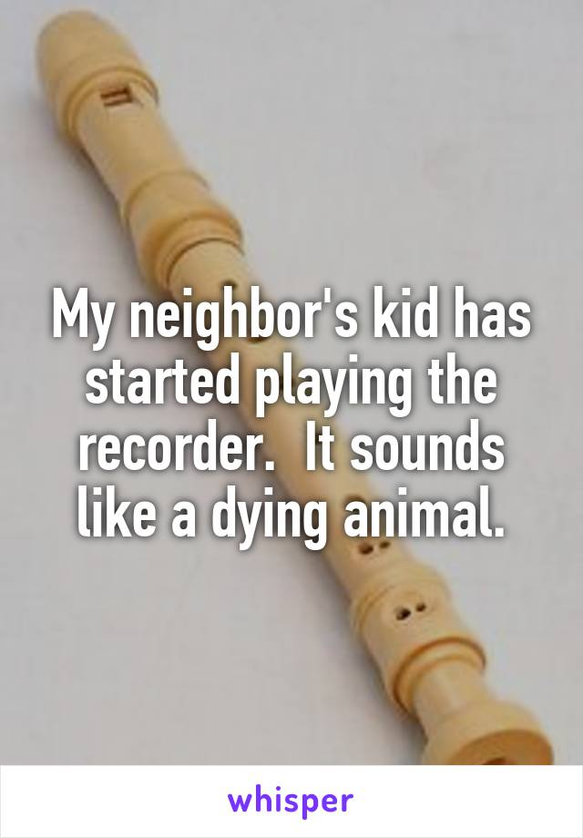 My neighbor's kid has started playing the recorder.  It sounds like a dying animal.